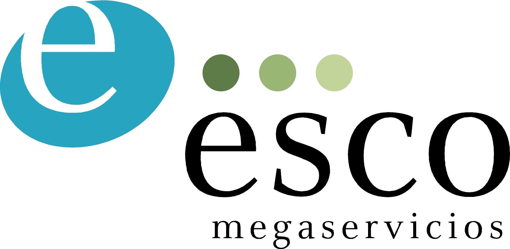 Logo Megaservicios gran
